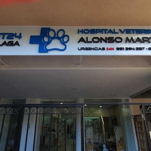 Hospital Veterinario 24 horas en Málaga