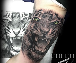 Artista Mateo:Tatuaje realismo y color
