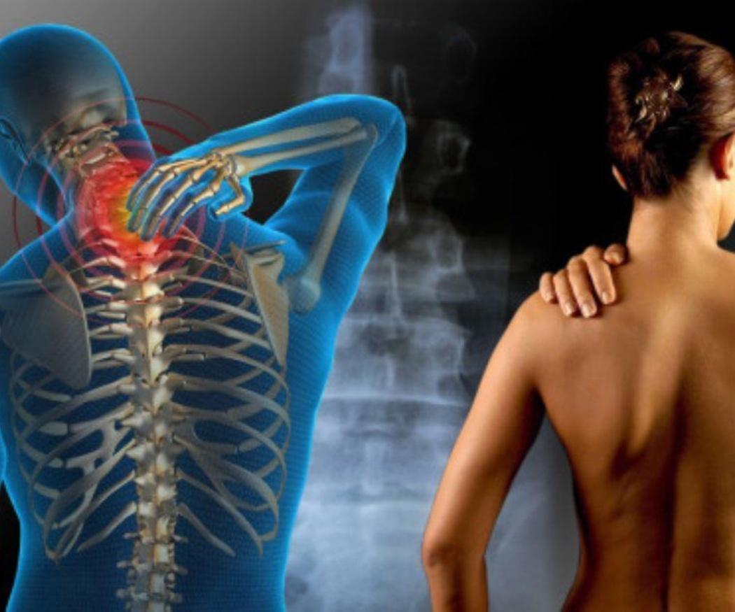 La osteopatía y su concepción del cuerpo