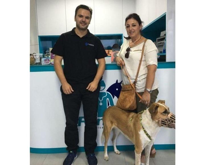 Etología: Servicios de Clínica Veterinaria Roncal
