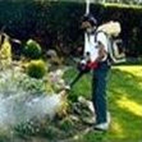 Tratamiento Integral de Jardines: Servicios de Vector 3 Control de Plagas, S. L.