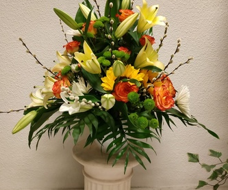 Bulbo : Productos y servicios   de Floristas San Isidro José