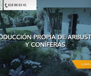 Viveros de plantas en Bilbao: Viveros Fadura