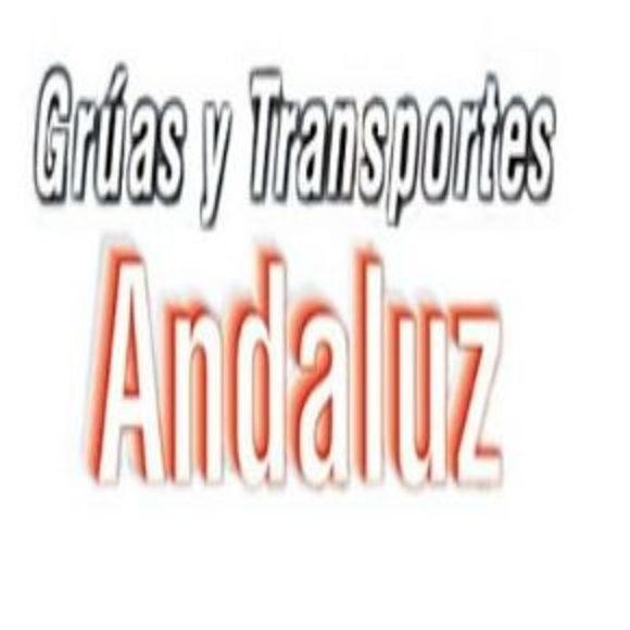 TRANSPORTES ANDALUZ VIGO : SERVICIOS de Transportes Andaluz