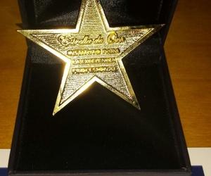 Estrella de Oro a la Excelencia Profesional