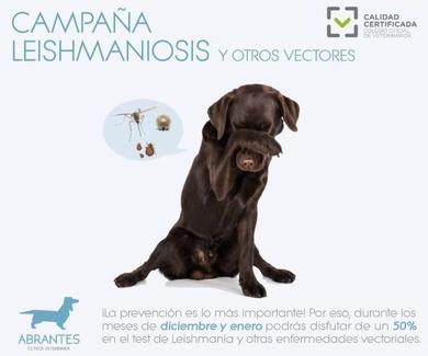 Campaña contra la leishmaniosis y otros vectores 2019-2020
