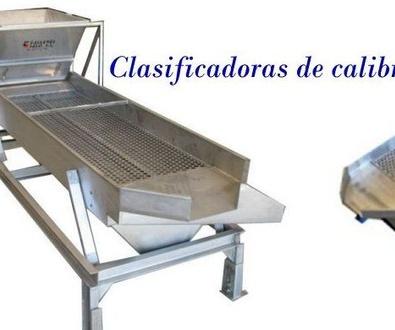 Clasificadoras Calibres Caracoles HELICICULTURA