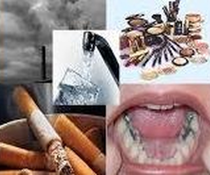 Metales pesados y su toxicidad para el organismo. Fuentes