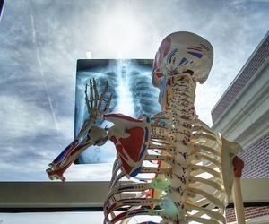 ¿Por qué formarse cómo kinesiólogo?