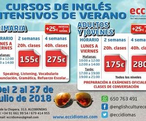Cursos de Inglés intensivos de Verano