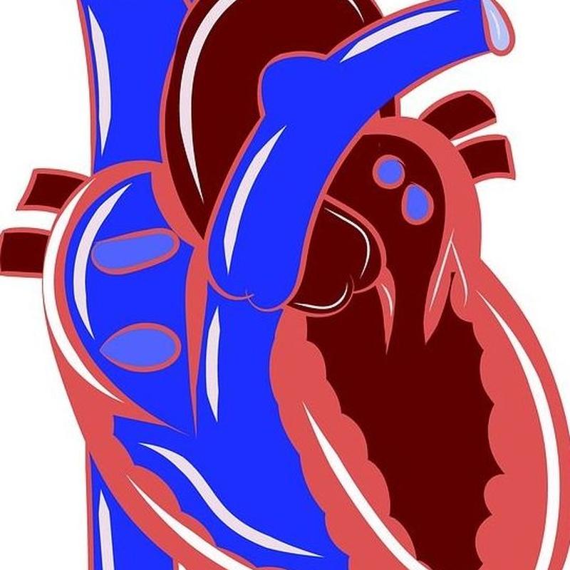 Analitica Cardiovasculares