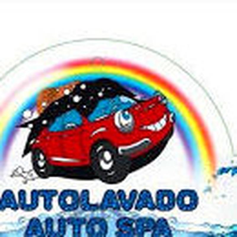 LIMPIEZA INTEGRAL TODO TERRENO Y FURGONETAS: LAVADO-MECANICA-ALQUILER FURGO de Tenaris Servicios Automoción