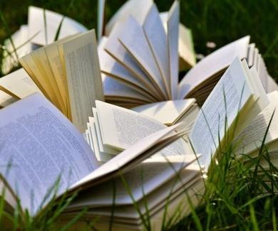 Verano: tiempo para leer