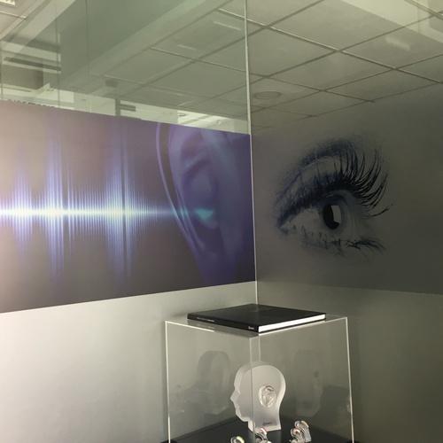 Especialistas en óptica y audiometría