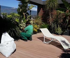 Decoración de terrazas e interiores