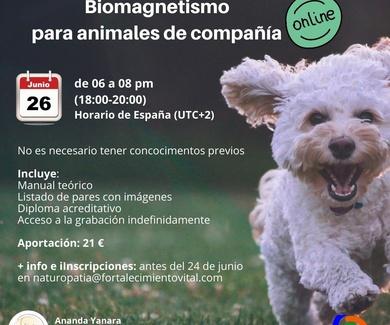 BIOMAGNETISMO PARA ANIMALES DE COMPAÑIA