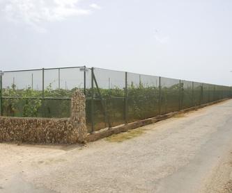 Cerramientos para campos de Futbol: Invernaderos de Invernaderos Campos