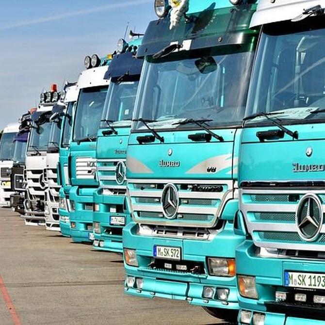 Diferencias entre tipos de básculas para camiones