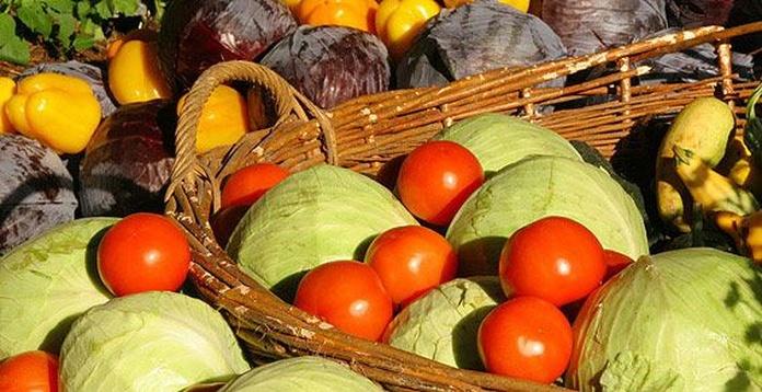 Servicio de sistemas de gestión: Productos y servicios de SiA Consultores Servicios Agroalimentarios