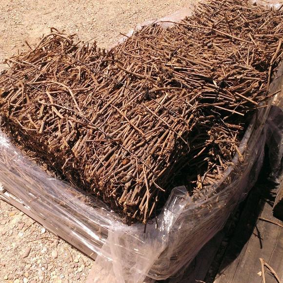 Sarmiento de viña: NUESTROS PRODUCTOS de Mofusa