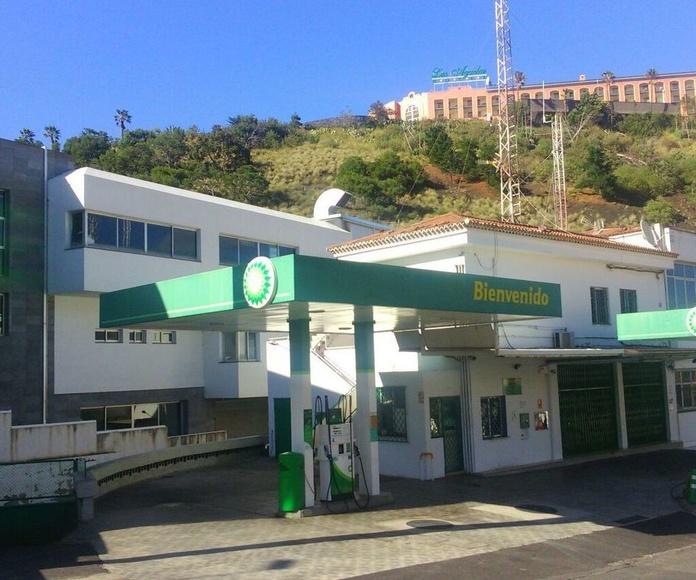 Estación de servicios: Servicios de San Telmo Servicios