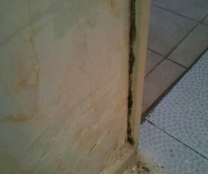 saneamientos de paredes