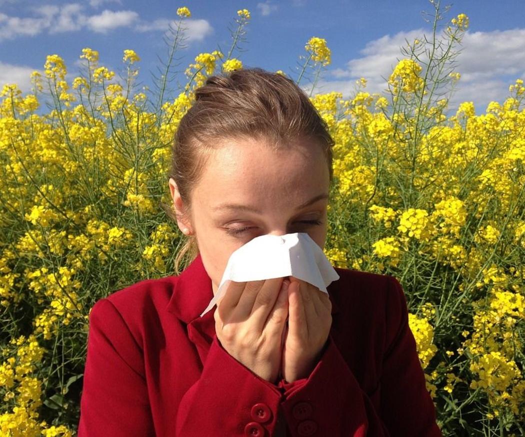 Las alergias de primavera