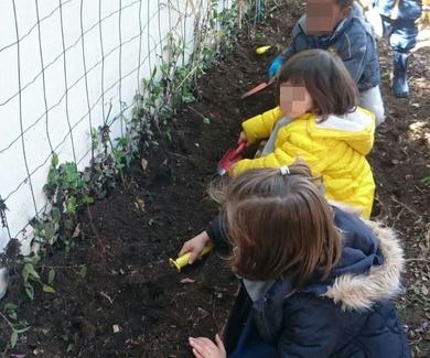 Jardinería / Gardening