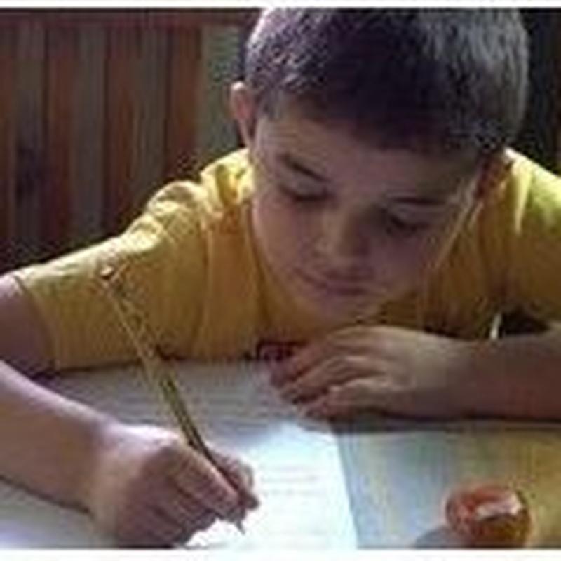 Servicio de atención psicopedagógica a domicilio: Servicios de Psicología Infanto Juvenil Nieves Nieto
