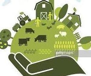Alimentación ecológica en La Rioja: Nextland Bio