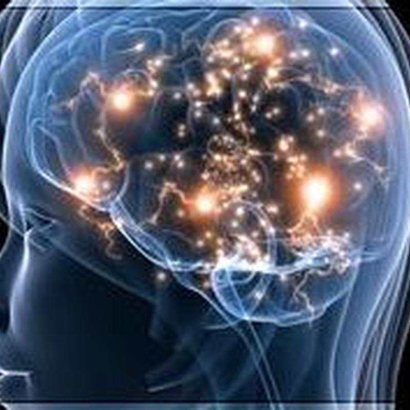 Memoria y rendimiento intelectual: Productos de Herbolario San Bernardo122
