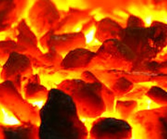 Distribución Profesional: Productos y servicios de elcarbonero.es