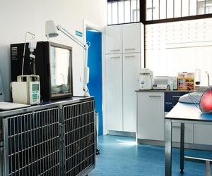 Sala de cuidados post-operatorios