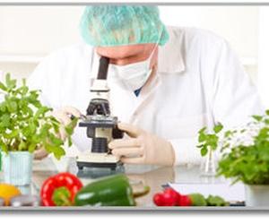 analisis de alimentos valencia