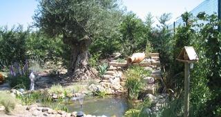 Diseño de jardines Pamplona