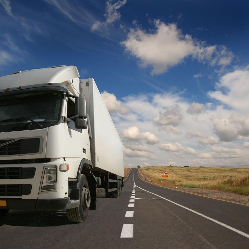 Camión: Servicios de Distribuciones Nieves