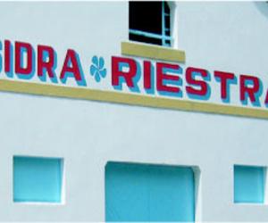 Sidra natural en Asturias | Sidra Riestra