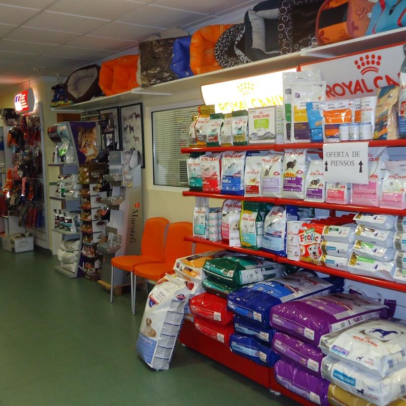 Tienda: Servicios de Clínica principal Veterinaria Puerto Mazarrón