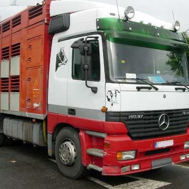 Transporte de animales por carretera: Servicios de Transportes de Animales Irazola