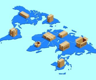 Servicio de empaquetado y desempaquetado: Servicios de Mudanzas Pablo Jiménez