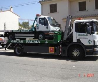 Servicio grúa Furgonetas: Servicios de Grúas Palma