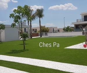 Proyecto paisajismo en jardín particular con césped artificial,  geoceldas, plantación ejemplares cocoteros en Valencia