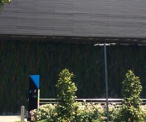 Jardines verticales para exteriores