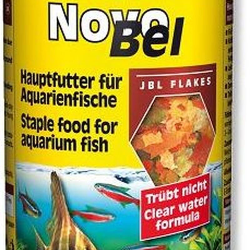 JBL NovoBel.
