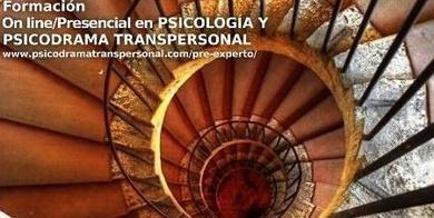 Programa FIPT Internacional
