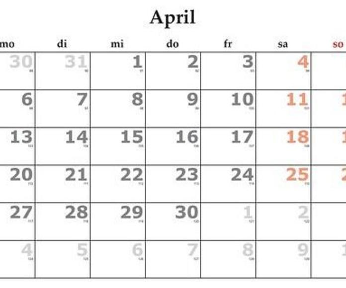 Abril: Servicios y Campañas de Clínica Veterinaria Benicalap