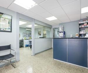 Galería de Veterinarios en Sant Feliu de Llobregat | Centre Veterinari Lacueva Rodrigo