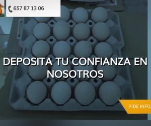 Distribución de huevos en Badalona, Barcelona | Ous Cabrera