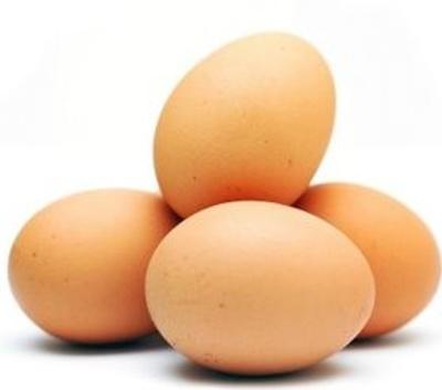 Todos los productos y servicios de Huevos: Granja Las Ventas Avícola Zaragoza