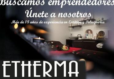 Franquicias Etherma
